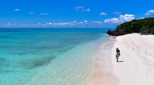 サンゴ礁シュノーケリング