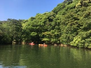 西表島のカヌーツアー