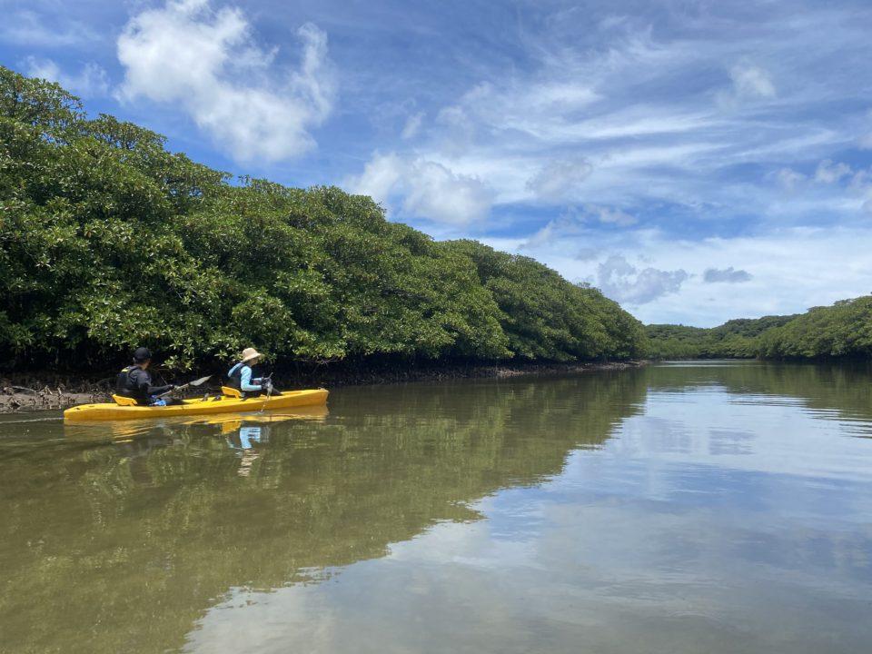 西表島のカヌー