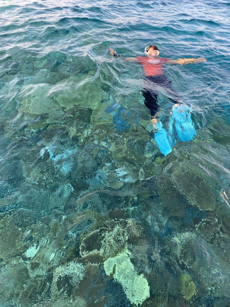 珊瑚の見える透明な海