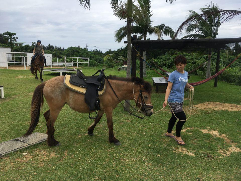 西表島の乗馬