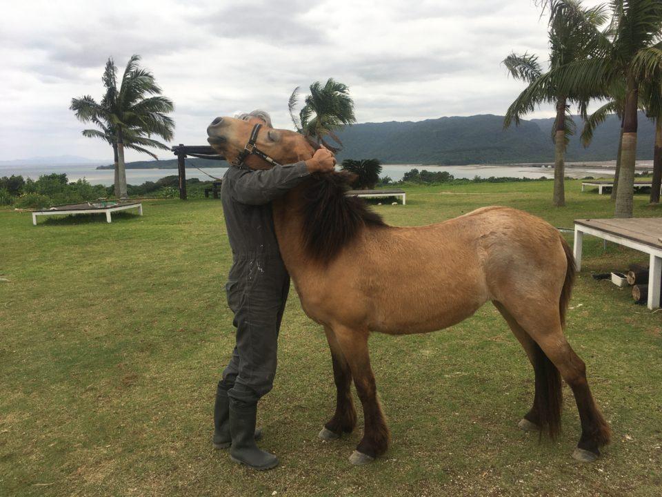 馬をかわいがるオーナー