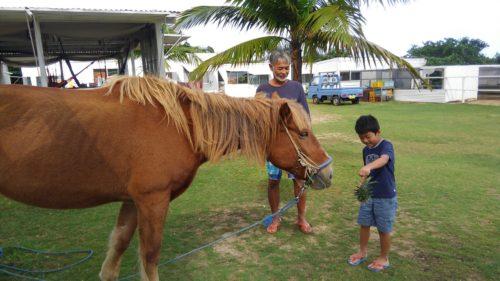 馬とビビる子供