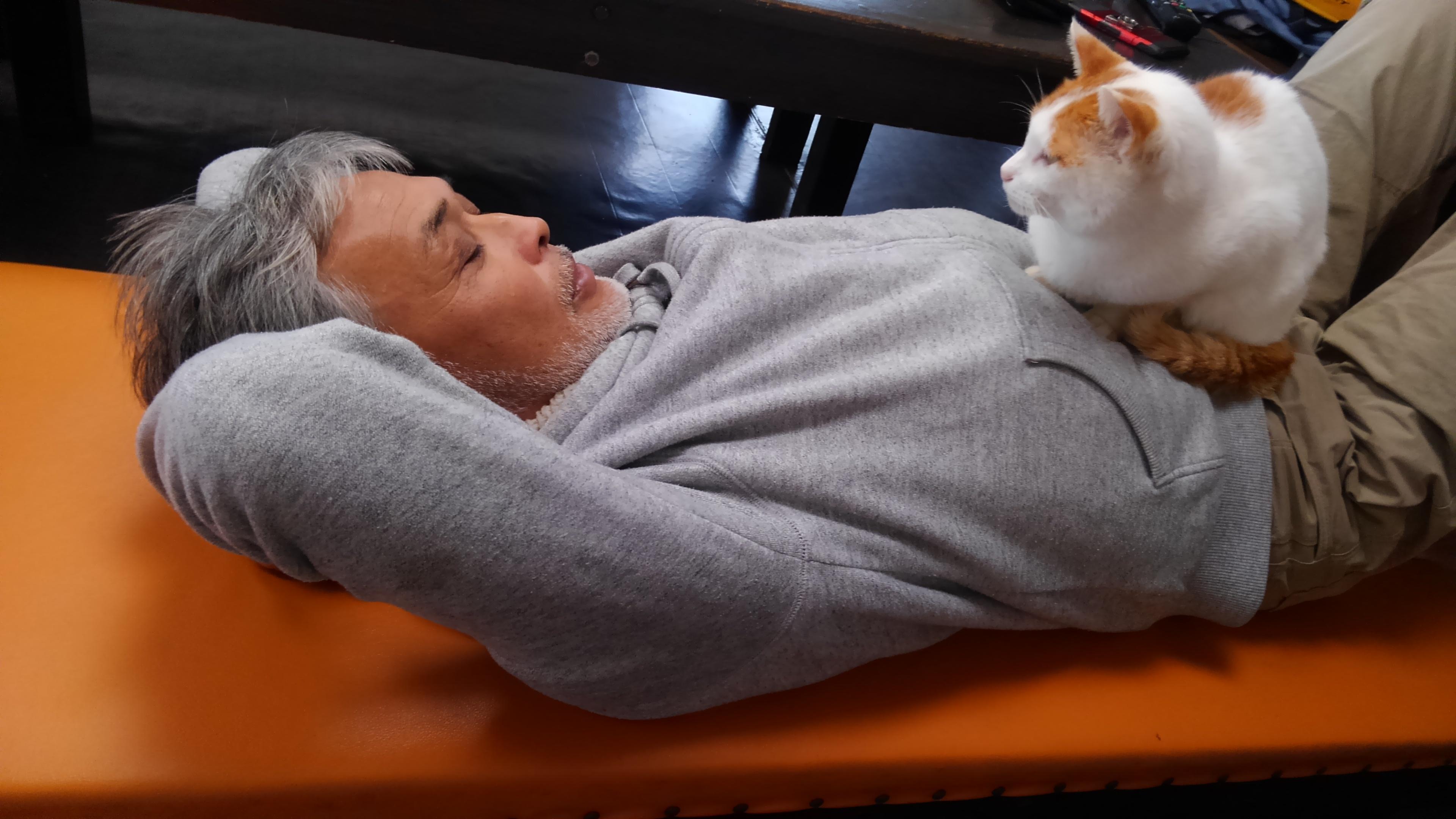 ネコとオーナー