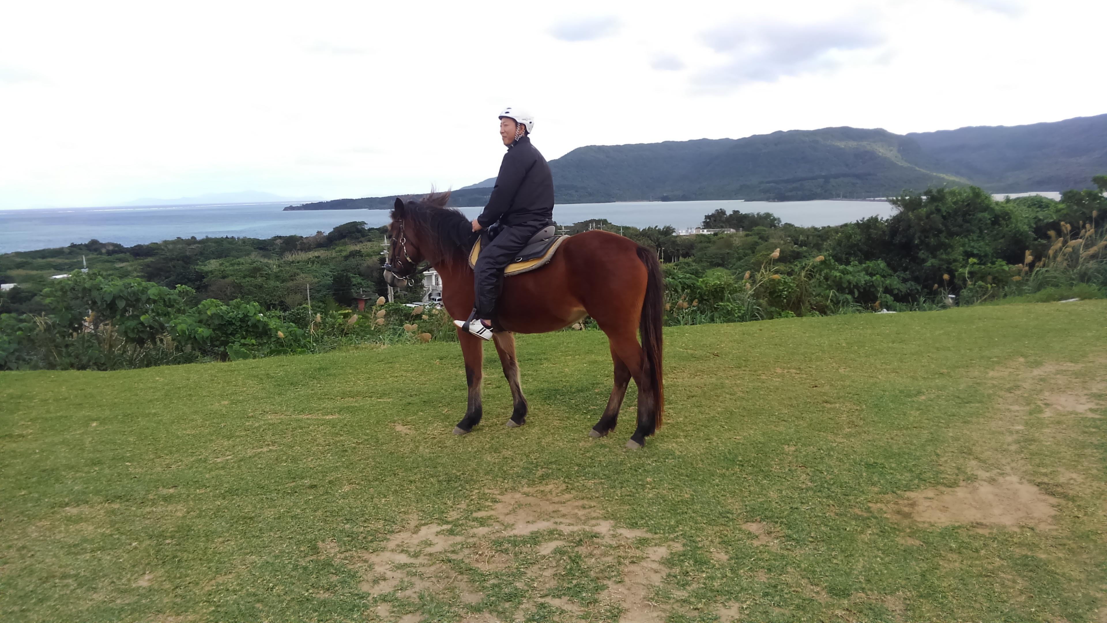 南国の乗馬体験