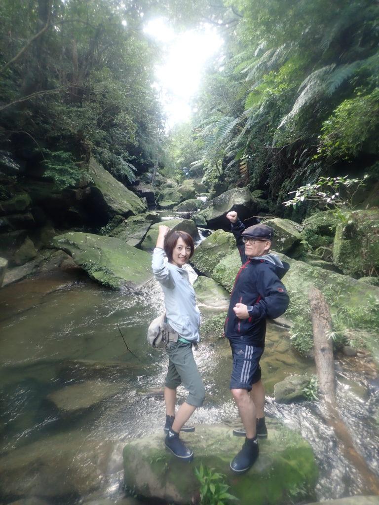 苔の茂るジャングル