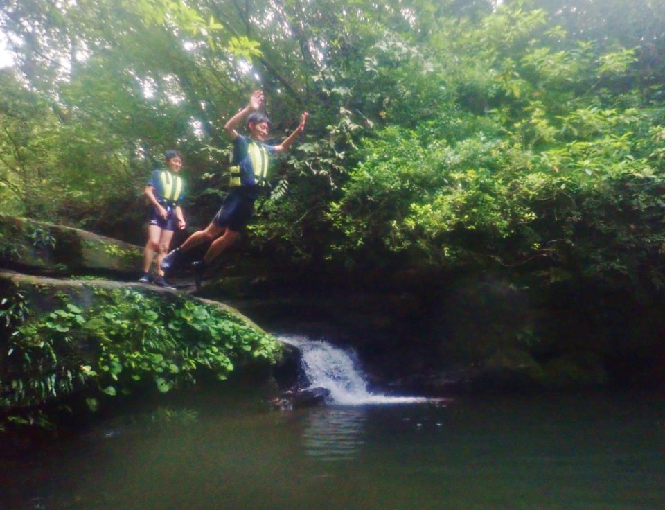 家族で楽しむジャングルツアー