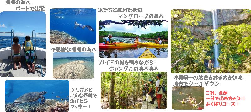西表島海と山のアクティビティ写真