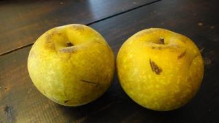 梨のアップサイドダウンケーキ 003