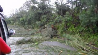 台風2日目 005