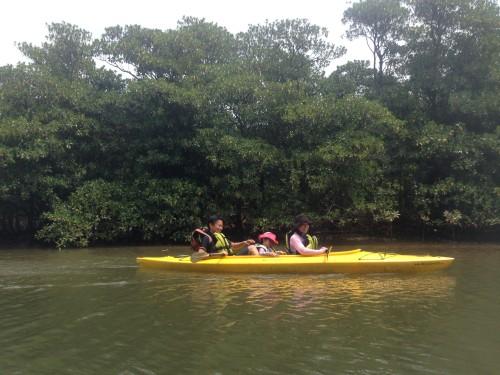 西表島のカヌーとトレッキング