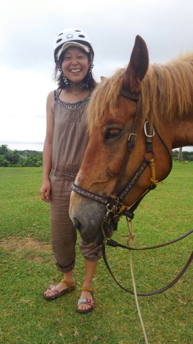 西表島の馬