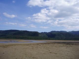 西表島の干潟
